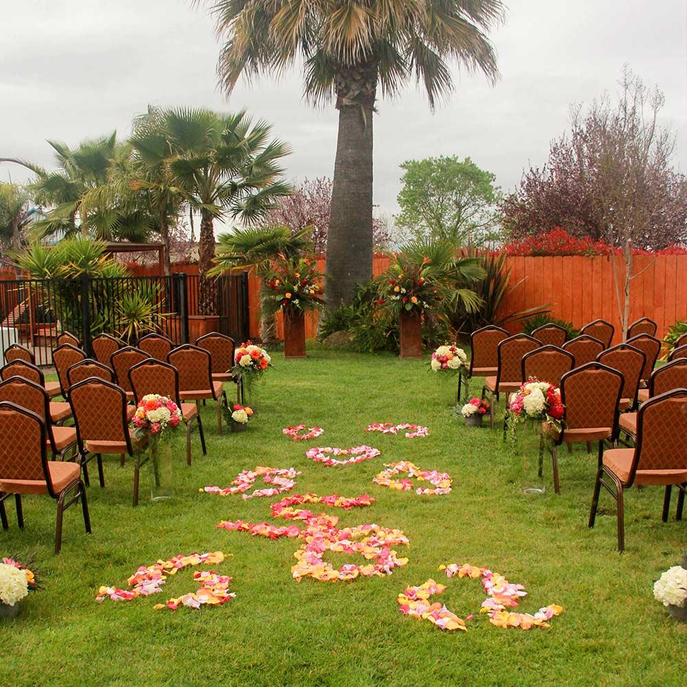 Palm Garden Paradise