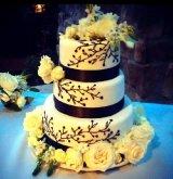 Sugar Bits Custom Cakes Photo