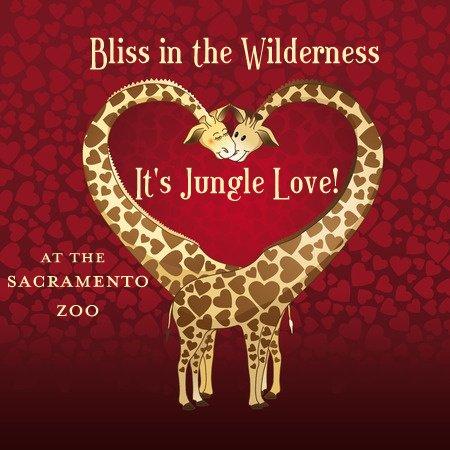 Sacramento Zoo Mixer